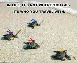 Tmnt Meme - tmnt turtles animals know your meme