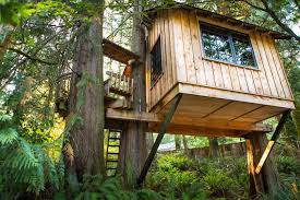 building your own tree house how to build a house why not a tree house home construction