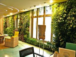 indoor wall garden australia i was lucky to provide the design