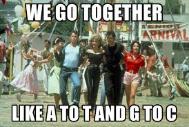 We Go Together Meme - we go together like a to t and g to c grease 1 meme generator