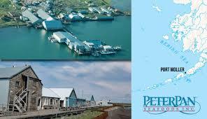 Alaska Travel Port images Fire at port moller alaska processing plant ends salmon season jpeg