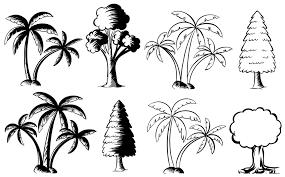 different types of trees different types of trees illustration royalty free stock image
