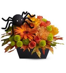 halloween flowers delivery chapel hill nc floral expressions and