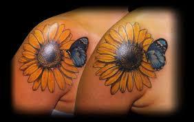 best 25 butterfly ideas on butterfly butterfly plus sunflower 3