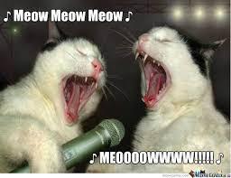 Singing Meme - singing cats by origamisenpai meme center