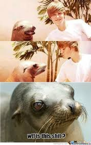Meme Foca Gay - ultra gay memes best collection of funny ultra gay pictures