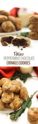 the 25 best paleo christmas cookie recipes leave some for santa