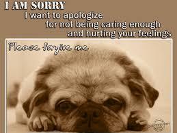 Please Love Me Quotes by I Am Sorry Please Forgive Me Google Search U003e U003e Please Feel