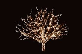 types of tree lighting u2014 carolina christmas light pros