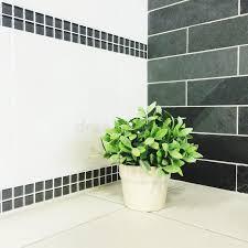 plante cuisine plante verte dans la cuisine image stock image du worktop