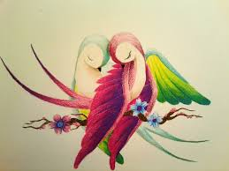 7 best images of drawings of birds love love birds drawing love