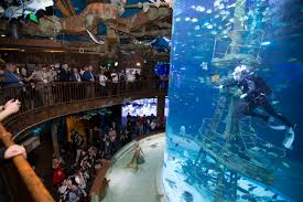 largest fish and wildlife attraction in the world opens in