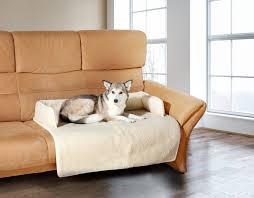 protection canapé hks couverture de protection de canapé pour chien 100 vierge