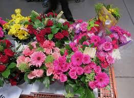 bulk hydrangeas sams bulk flowers decor wholesale hydrangeas sams bulk