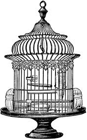 Specchio Shabby Chic On Line by 55 Best Bird Caged Images On Pinterest Bird Cages Bird Houses