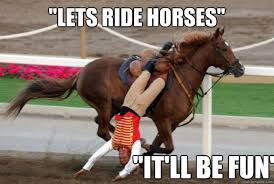 Horse Riding Meme - lets ride horses it ll be fun horse riding fail quickmeme