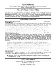 sample realtor resume commercial real estate portfolio manager
