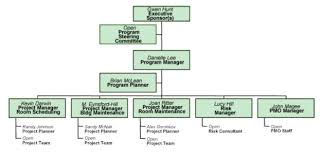 defining program governance and structure