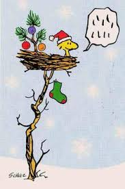 Charlie Brown And Christmas Tree - got your back little tree charlie brown christmas tree and gifs