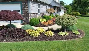 landscaping ideas for backyard full sun the garden inspirations