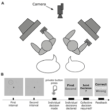 frontiers joint perceptual decision making a case study in