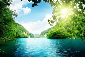 lake trees forest sea sky clouds beautiful nature landscape