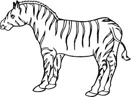 zebra coloring animals town animal color sheets zebra picture