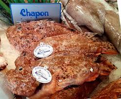 cuisiner un chapon dictionnaire de cuisine et gastronomie chapon poisson
