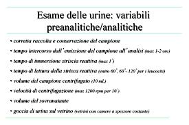 leucociti a tappeto analisi delle urine medicina docsity