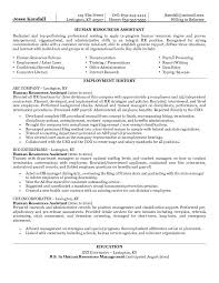 Sample Resume For Hr Coordinator Download Examples Of Human Resources Resumes