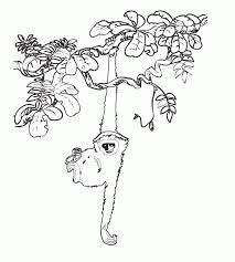 mammals coloring pages jungle animals coloring pages for kids coloring home