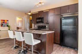 appartments for rent in edmonton edmonton north east one bedroom apartment for rent ad id cul