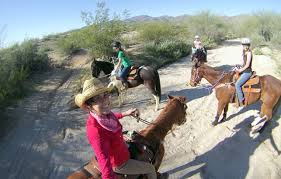 horseback riding lessons and more