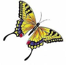 coloured butterfly design tattoos book 65 000 tattoos