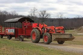 top hill farms inc u cut christmas tree goodrich michigan