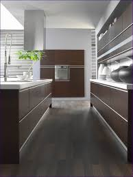 Best Paint To Use On Kitchen Cabinets Uncategorized Spraying Laminate Kitchen Cabinets Painting