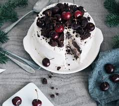 22 screamingly scrumptious ice cream cake recipes brit co