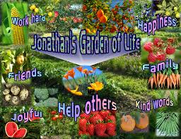 A Garden Of Flowers by Plant Flowers Pull Weeds Creating A Garden Of Life Pocket