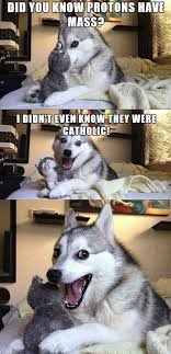 Chemistry Dog Meme - this joke is positively attractive chemistry humor chemistry