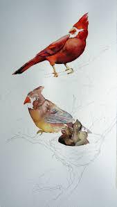 cardinal family leslie white