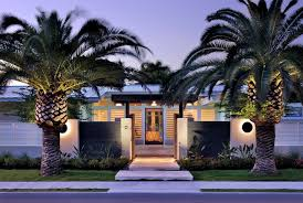 palm trees in front yards houzz