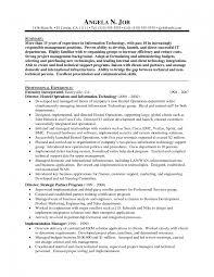 resume exles information technology manager requirements sle information technology manager resume best o sevte