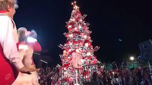 grinch tree the globe kicks their 20th season of dr seuss s how the
