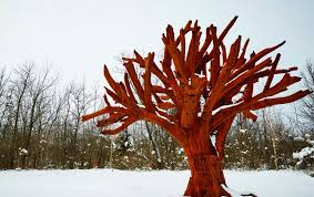 iron tree meijer gardens