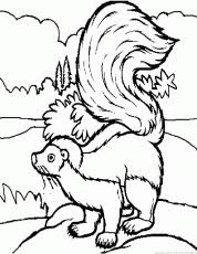 free printable skunk coloring pages kids coloring