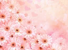 girly background pictures for desktop flower background pics group 54