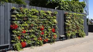 landtech soils green walls for outdoor u0026 indoor greening