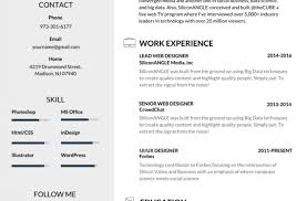 Best Resume Formats 40 Free by Pleasant Graphic Of Free Resume Samples For Engineering Freshers