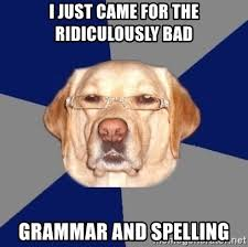 Bad Spelling Meme - i just came for the ridiculously bad grammar and spelling racist