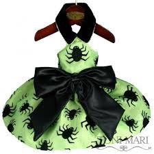 Spider Halloween Costume Dogs 25 Spider Dog Ideas Dog Spider Costume